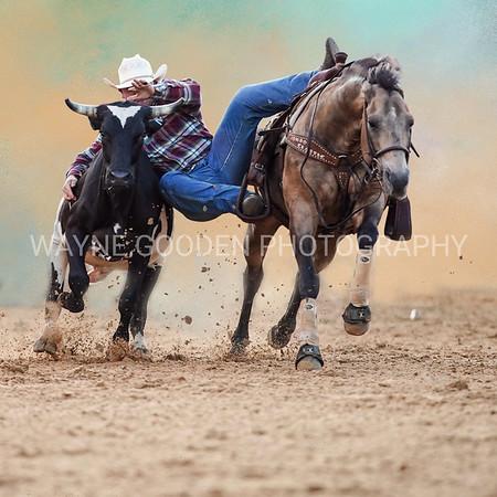 Steer Wrestler Mabank Texas