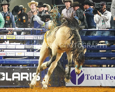 Anthony Barrington  Bareback Bronc Riding