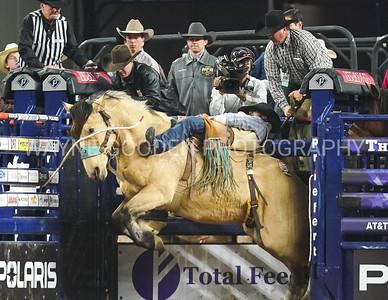 Anthony Barrington  Bareback Bronc Riding