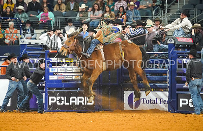Anthony Barrington - The American Rodeo