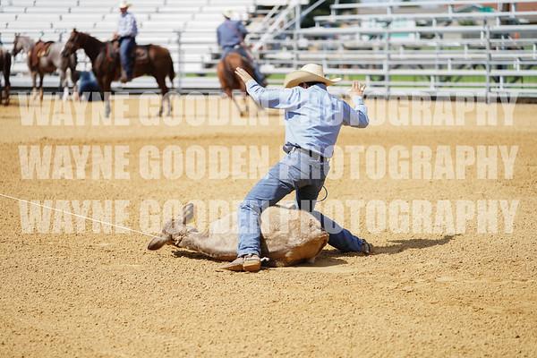 Tanner Green Tie Down Roping