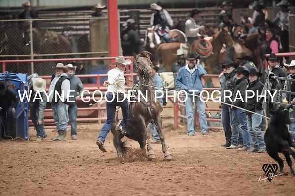 Colt Carpenter Roper2 WG