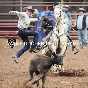 Colt Carpenter WG