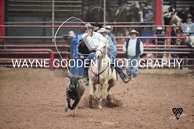 Colt Carpenter Roper WG