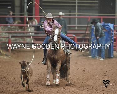 Colt Carpenter Tie Down Roper WG