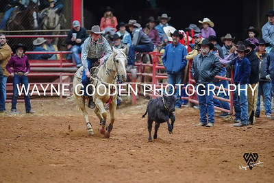 Colt Carpenter Roper3 WG