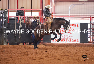 Brady Lauer Ranch Bronc WG