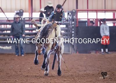 Dawson Rice Ranch Bronc 2 WG