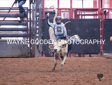 Trig Smith Steer Riding 2 WG