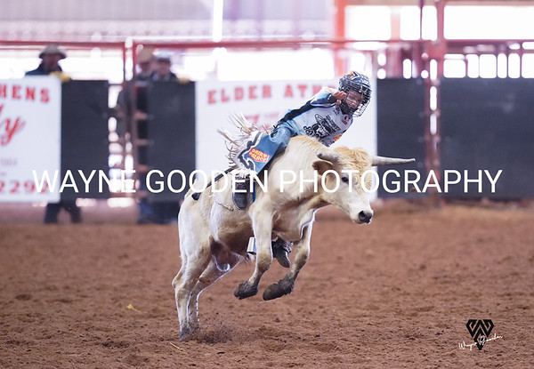Trig Smith Steer Riding WG