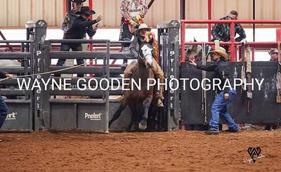 Brady Lauer Ranch Bronc 2 WG
