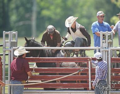 United Pro Rodeo Company - May 2 Bucking Horses
