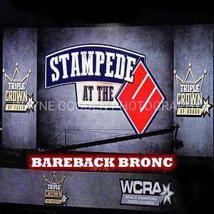 WCRA Bareback Long Round
