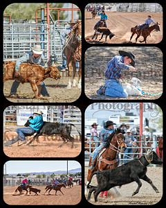 Rodeo Picture Collages