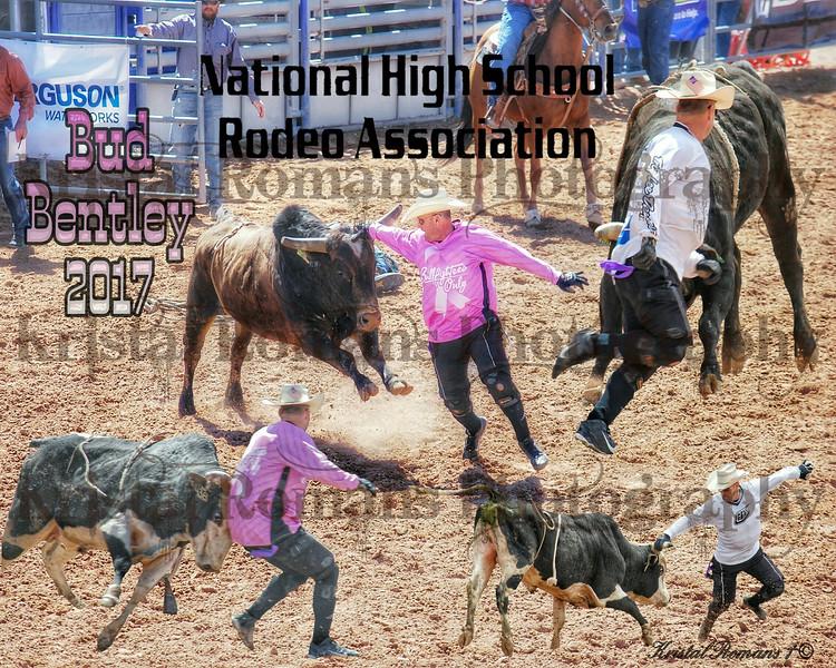 Bud Bentley Bullfighting Collage