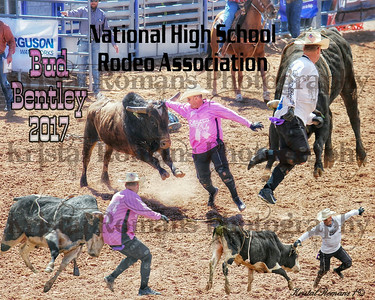 Specialty Rodeo Collages
