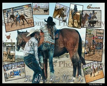 Custom Picture Collages