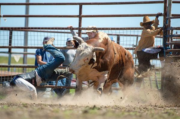 Flying U Rodeo's Free Rough Stock School Marysville, CA