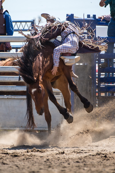 Flying U Rodeo's Free Rough Stock School Marysville, CA