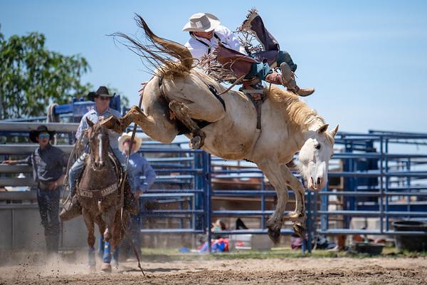 Flying U Rodeo's Free Rough Stock School, Marysville, CA