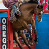 That horse, though... 27th Annual PRCA Eugene Pro Rodeo July 04, 2018 Eugene, OR. #eugeneprorodeo #fourstarrodeo