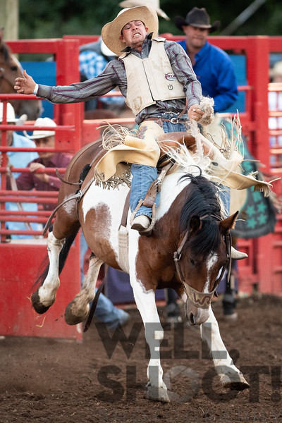 Sam Harper, Paradise Valley, NV. Grougeous horse. 27th Annual PRCA Eugene Pro Rodeo July 04, 2018 Eugene, OR. #painthorse #eugeneprorodeo