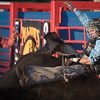 Rough night at the Firecracker Bull Ride for the Bull Riders. 27th Annual PRCA Eugene Pro Rodeo July 07, 2018 Eugene, OR.