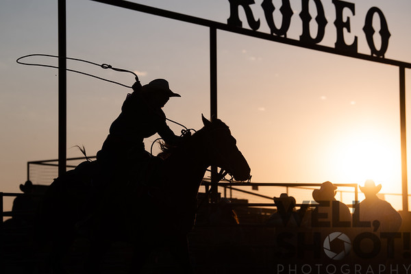 That slack light, though. Gilroy Rodeo August 10, 2018 Gilroy, CA. #gilroyrodeo. Taken during @mattcohenphoto workshop.