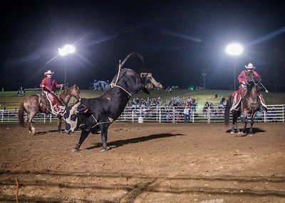 Rodeo! at River Oaks Arena May 2017