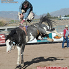 Rodeo : 2 galleries with 148 photos