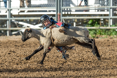 DSC_1248 2013-06-14 Logan Rodeo