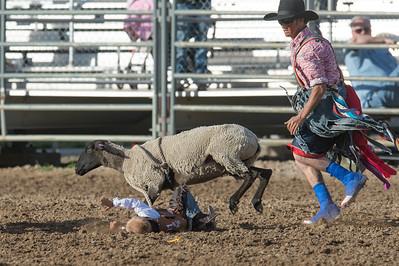DSC_1185 2013-06-14 Logan Rodeo