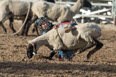 DSC_1254 2013-06-14 Logan Rodeo