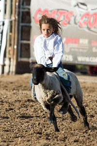 DSC_1289 2013-06-14 Logan Rodeo