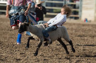 DSC_1298 2013-06-14 Logan Rodeo