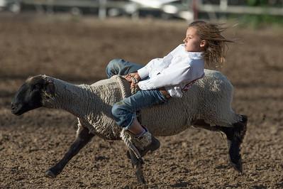 DSC_1304 2013-06-14 Logan Rodeo