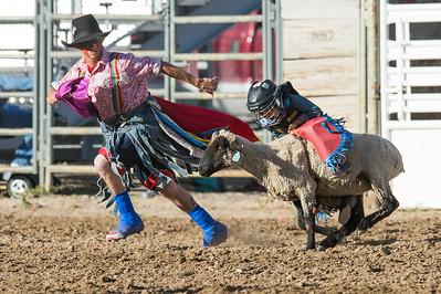 DSC_1239 2013-06-14 Logan Rodeo