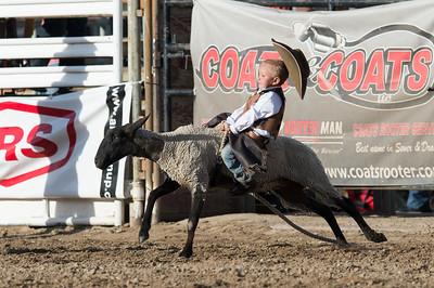 DSC_1177 2013-06-14 Logan Rodeo
