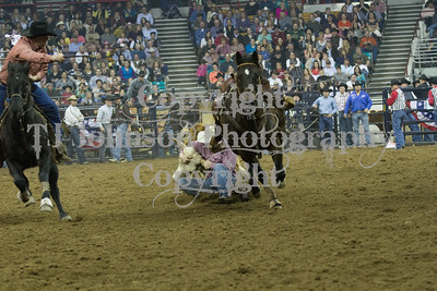 2013 National Western - Saturday  Timed Events