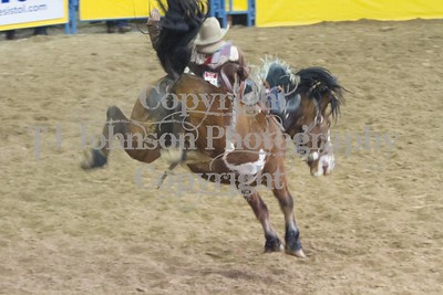 2013 NFR