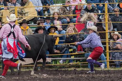 bulls-0467