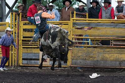 bulls-0510