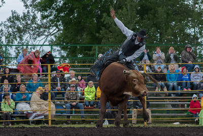bulls-0458