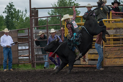 bulls-0460