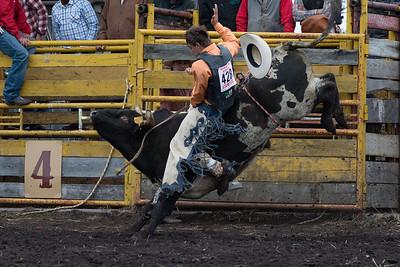 bulls-0509