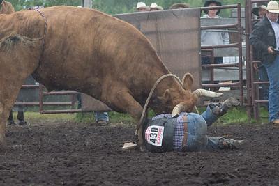bulls-1207