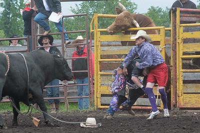 bulls-1247