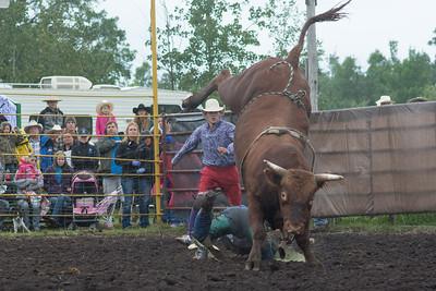 bulls-1221