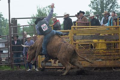 bulls-1202