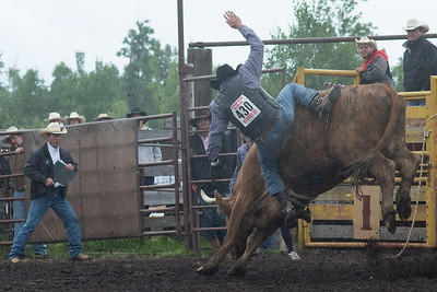 bulls-1203